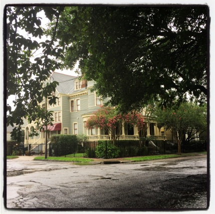 Beautiful homes abound in the Garden District